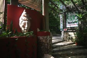 obrázek - Yaxkin Hostel-Palenque