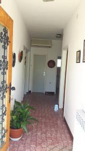 Apartment Maja, Апартаменты  Цриквеница - big - 11