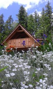 Planinski Dom Majerhold