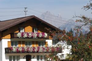 Haus Dachstein Schnitzer