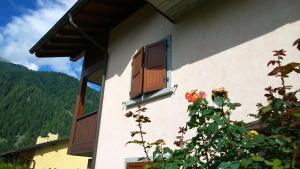 Appartamento Felce, Apartments  Pinzolo - big - 4