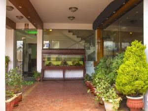 OYO 3217 Kurinji Residency, Hotels  Ooty - big - 16
