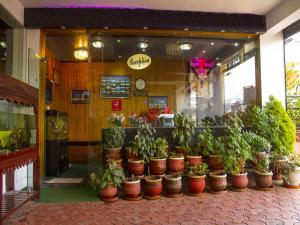 OYO 3217 Kurinji Residency, Hotels  Ooty - big - 19