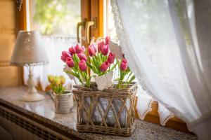 Pensjonat Teresa, Guest houses  Zakopane - big - 88