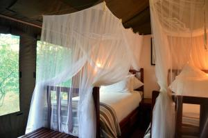Elephant Valley Lodge, Лоджи  Kasane - big - 9