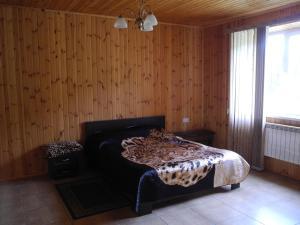 Zeleny Bereg Guest House, Гостевые дома  Никитино - big - 8