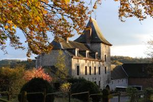 B&B Le Manoir d'Ange, Bed & Breakfasts  Ferrières - big - 41