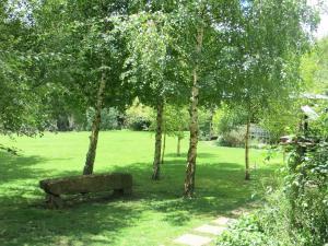 Millpond House, Pensionen  Clarens - big - 51