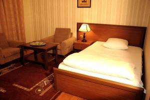 Отель Гянджа - фото 16