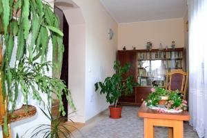 Casa Andrada & Ilinca, Penziony  Gura Humorului - big - 18
