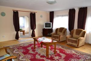 Casa Andrada & Ilinca, Penziony  Gura Humorului - big - 4