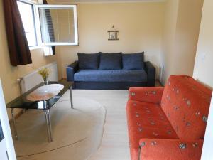 Apartment Mladenovic, Apartmanok  Zlatibor - big - 19