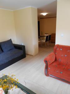 Apartment Mladenovic, Apartmanok  Zlatibor - big - 15