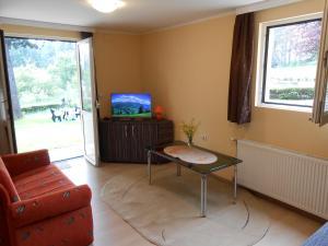 Apartment Mladenovic, Apartmanok  Zlatibor - big - 7