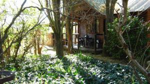 Elands River Lodge, Kunyhók  Machadodorp - big - 23