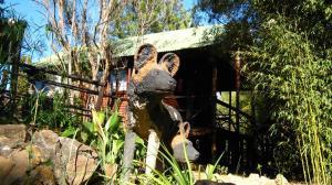 Elands River Lodge, Kunyhók  Machadodorp - big - 25