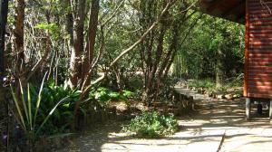 Elands River Lodge, Lodges  Machadodorp - big - 26