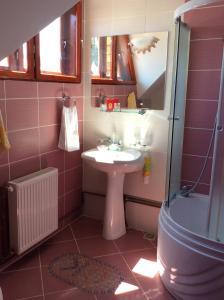 Casa Andrada & Ilinca, Penziony  Gura Humorului - big - 12