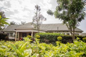 Engo Kitale Airport Hotel