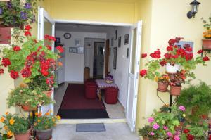 Hostel David - фото 7