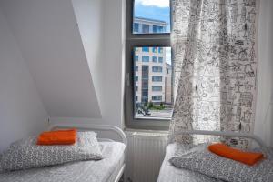 Hostel Petya and the Wolf - V.O., Hostely  Petrohrad - big - 28