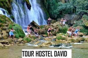Hostel David - фото 20