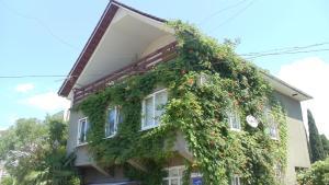 Guest house Udacha