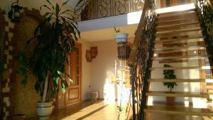 Гостевой дом У Михалыча - фото 8