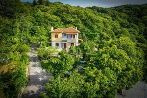Guesthouse Papachristou, Pensionen  Tsagarada - big - 37