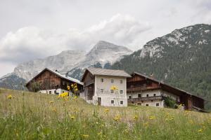 Mesnerhof-C | Tirol