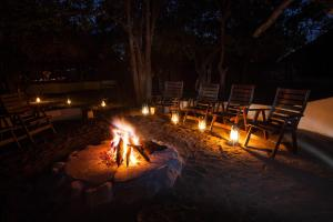 Tuli Game Reserve - Hatari Camp
