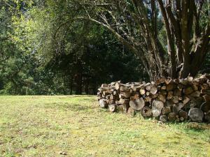 Allenvale, Chaty v prírode  Lorne - big - 42