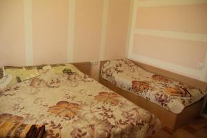 Hotel Novyi