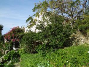 Stone Villa Andros