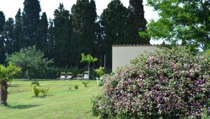 Mas Horta Prim, Vidiecke domy  Sant Pere Pescador - big - 54