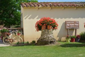 Mas Horta Prim, Vidiecke domy  Sant Pere Pescador - big - 56