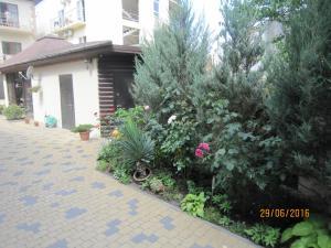 Guest House on Oktyabrskaya 2, Penziony  Divnomorskoye - big - 13
