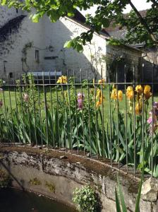 Le Figuier, Bed & Breakfast  Sainte-Maure-de-Touraine - big - 28
