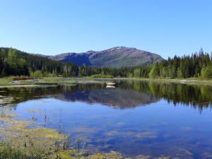 Velfjord Camping & Hytter