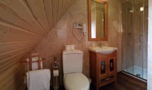 Hotel Sarao, Hotel  Escarrilla - big - 13