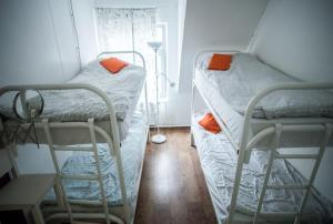 Hostel Petya and the Wolf - V.O., Hostely  Petrohrad - big - 36