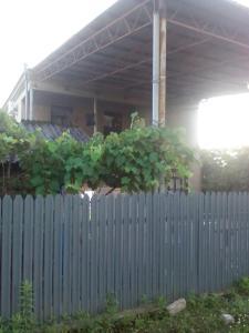 Гостевой дом Карина - фото 4