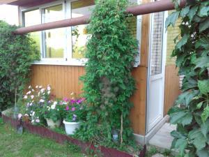 Гостевой дом На Покровской 20 - фото 18
