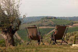 Casale Sterpeti, Bed & Breakfast  Magliano in Toscana - big - 21