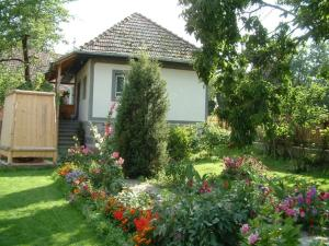 Firtos Vendégház, Guest houses  Firtuşu - big - 4