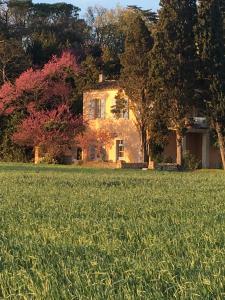 Château Pech-Celeyran, Nyaralók  Salles-d'Aude - big - 36