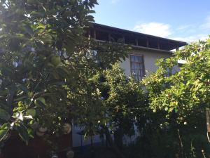 Гостевой дом На Титова, 84 - фото 18