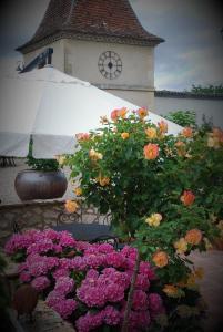 Manoir du Bois Mignon, Bed & Breakfasts  Le Fleix - big - 42