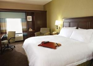 Hampton Inn & Suites San Antonio Brooks City Base, TX, Hotels  San Antonio - big - 2