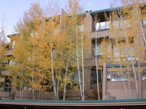 Вейл (Колорадо) - Homestake Condos